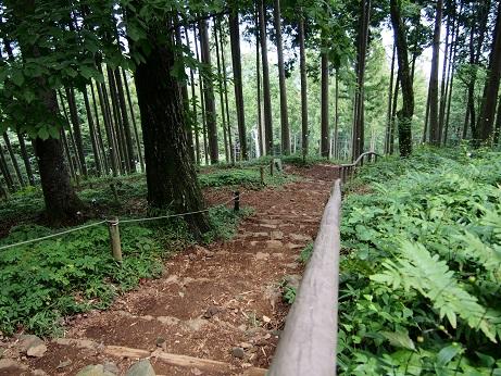 2013-08-03-9山中.JPG