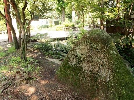 2013-08-07-1井の頭公園-10%.jpg
