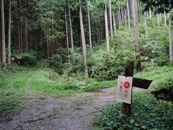 2013-09-29-14石神沢の私的休憩所.JPG