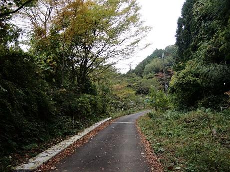 2013-11-09-1宮ノ平ハイキングコース入り口-10%.jpg