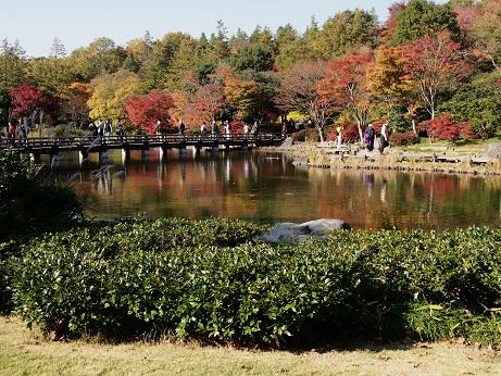 2013-11-18-10橋-2-10%.jpg