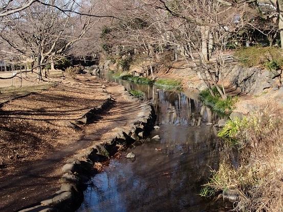 2014-01-02-1神田川上流-12%.jpg