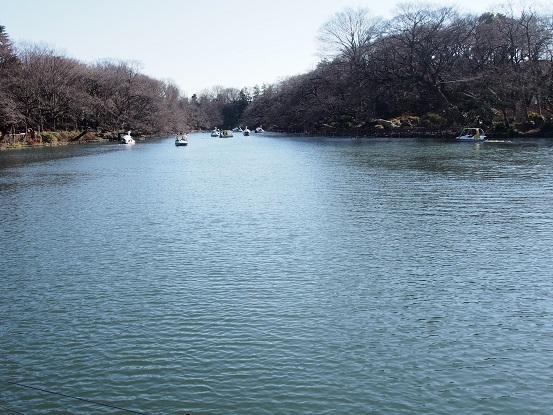 2014-01-02-2井の頭池-12%.jpg