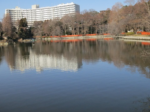 2014-01-22-12西池の柵-12%.jpg