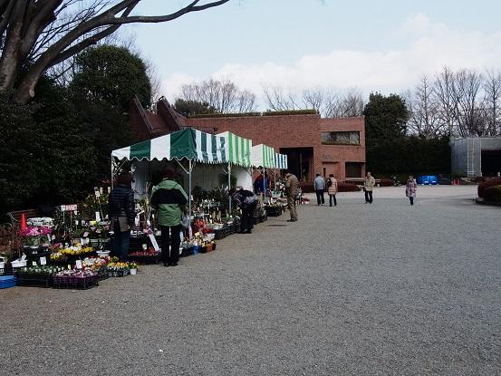 2014-02-01-1神代植物公園花屋さん-12%.jpg