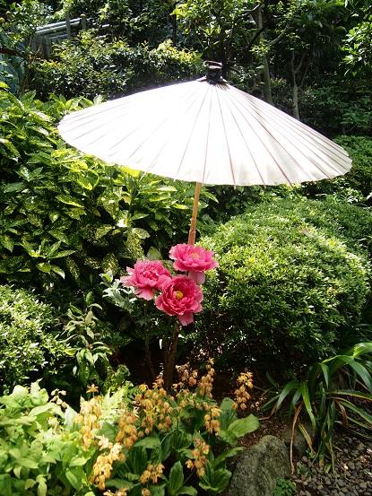 2014-05-07-20傘の牡丹-12%.jpg