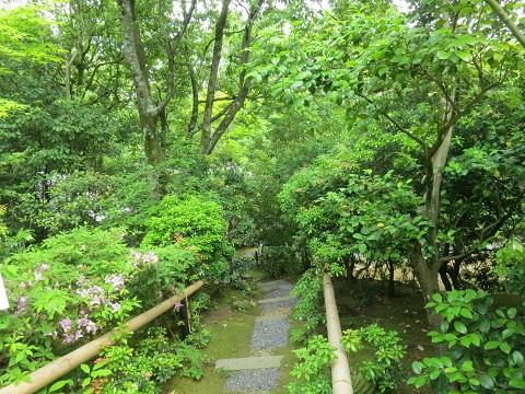 2014-05-25-28本阿弥墓前へ-12%.jpg