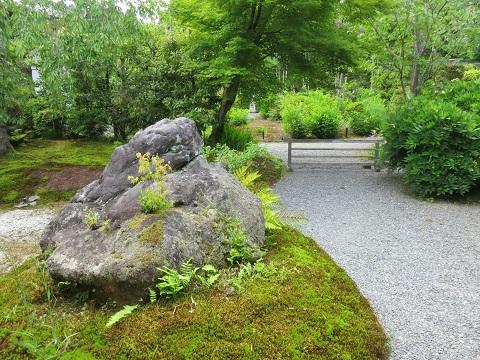 2014-05-25-5常照寺庭園-1-12%.jpg