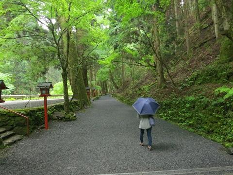 2014-05-26-14-1中宮へ-12%.jpg