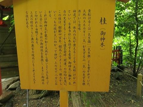2014-05-26-40-桂神木案内-12%.jpg