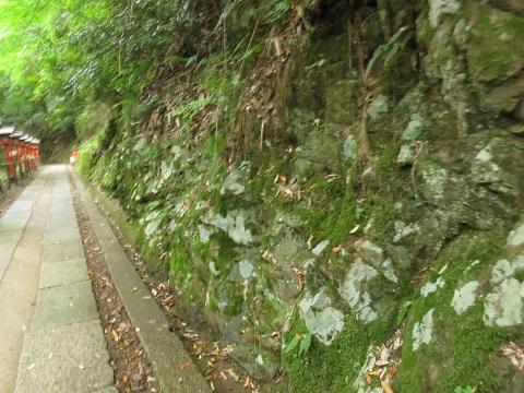 2014-05-26-52緑色岩-12%.jpg