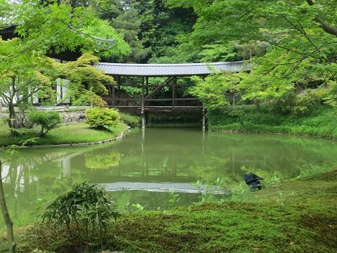2014-05-27-10臥龍橋-12%.jpg