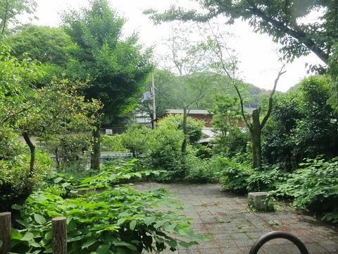2014-05-27-2-2高台寺付近の山-12%.jpg
