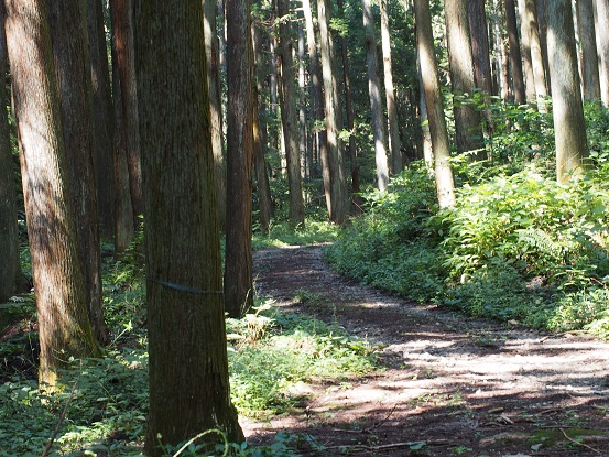 2014-09-16-34石神沢-4-12%.jpg