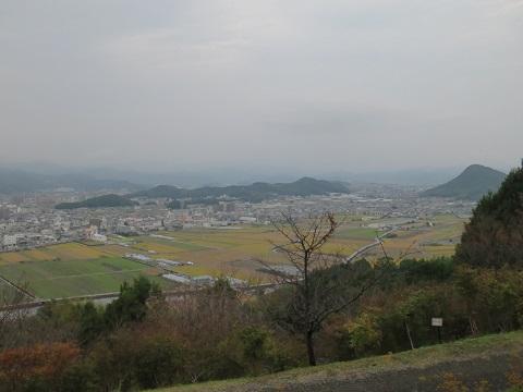 2014-11-02-17薬用植物区付近の見晴台-12%.jpg