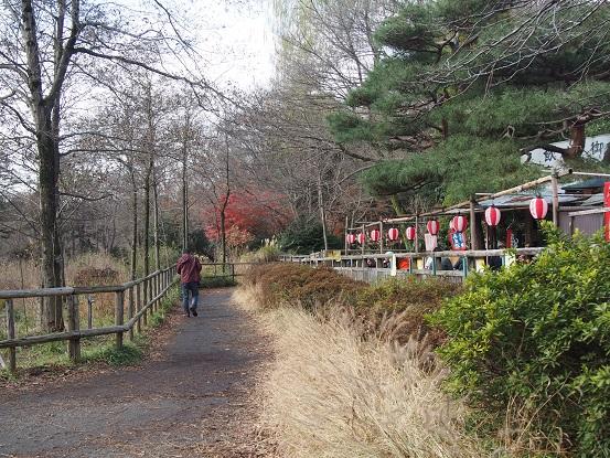 2014-12-21-13三宝寺池茶屋前-12%.jpg