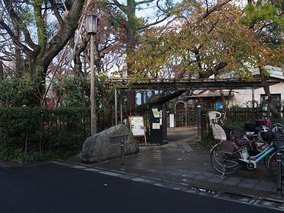 2014-12-21-1牧野記念庭園正面-12%.jpg