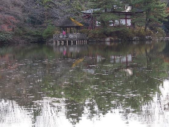 2014-12-21-23三宝寺池-12%.jpg