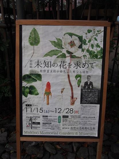 2014-12-21-7企画展ポスター-12%.jpg