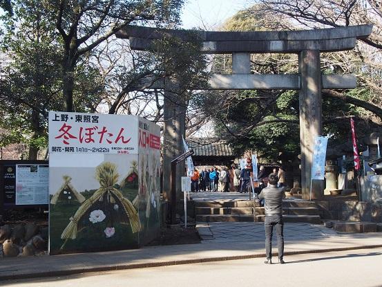 2015-01-11-1上野東照宮牡丹苑1-12%.jpg