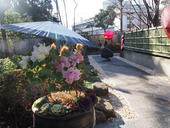 2015-01-11-3ぼたん苑-12%.jpg