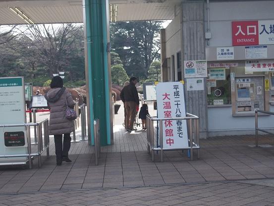 2015-02-07-1神代植物公園正門-12%.jpg