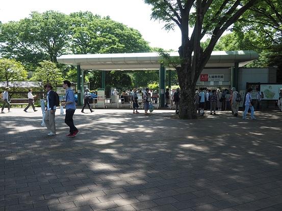 2015-5-17-1-1神代植物公園-12%.jpg