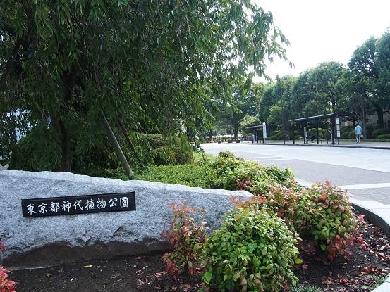 2015-9-22-1神代植物公園入口-12%.jpg