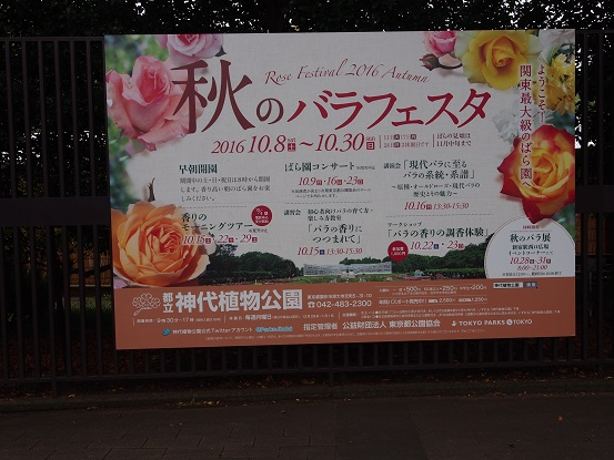 2016-10-10-2薔薇フェスタ―看板-12%.jpg