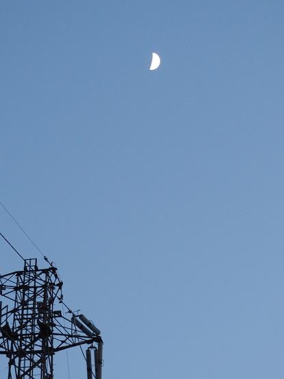 2016-11-7-1上弦の月-12%.jpg