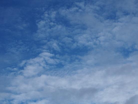 2016-8-1-0-2雲-12%.jpg