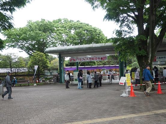 2017-5-14-1神代植物公園正門-12%.jpg