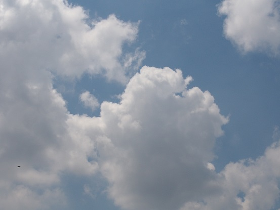 2017-6-15-2雲-2-12%.jpg