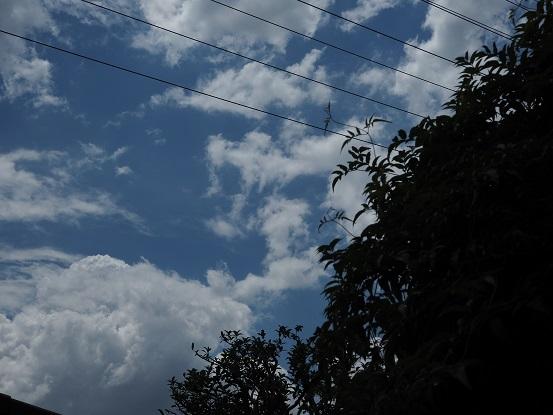 2017-6-4-4雲-12%.jpg