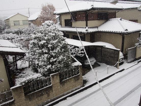 2018-1-22-1降雪始まる-12%.jpg