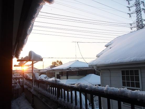 2018-1-23-1積雪の朝-12%.jpg