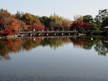 2013-11-18-8橋-1-10%.jpg