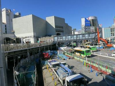 2013-11-30-10澁谷東急百貨店-10%.jpg