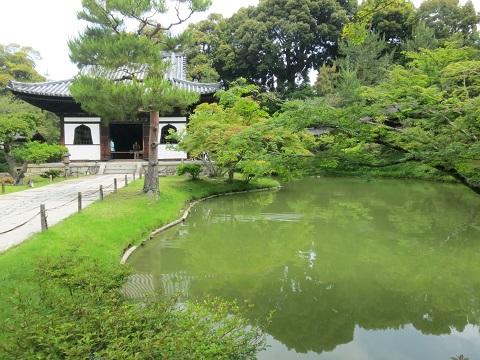 2014-05-27-7臥龍池-12%.jpg